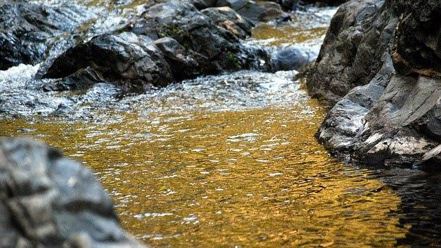 [Erotica] The GoldenStream