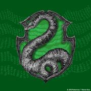 pm-pride-Slytherin-Facebook-Profile-Image-180-x-180-px